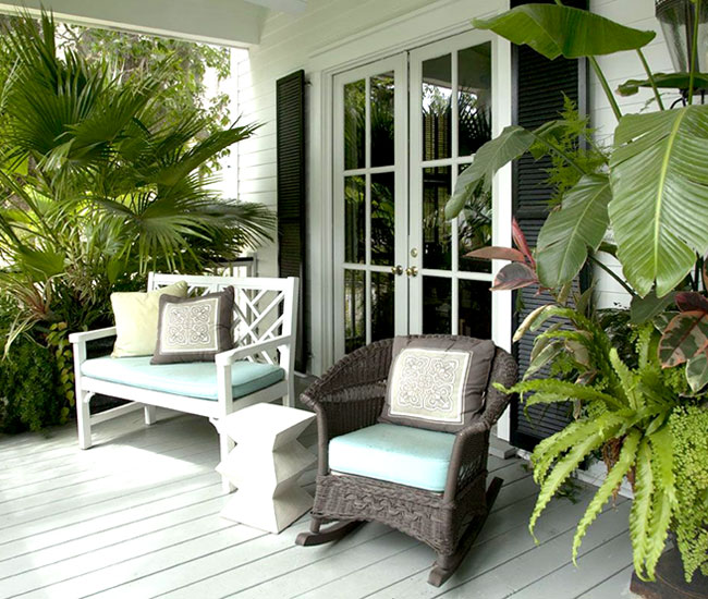 Picture of potted Chinese Fan Palm by the deck.